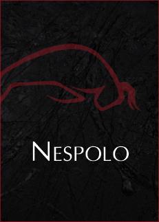 nespolo